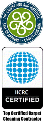 Professional Carpet Cleaners Stafford VA